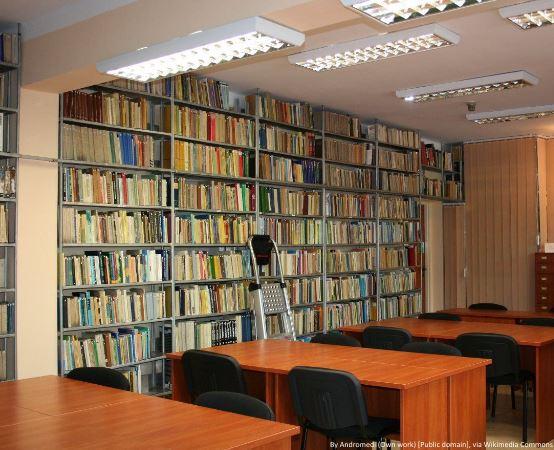 Biblioteka Piotrków Trybunalski: KINO NA LEŻAKACH